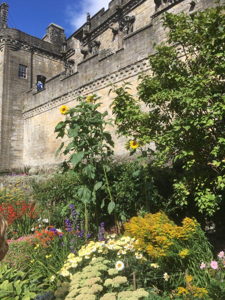 Queen Anne garden Stirling Castle 2